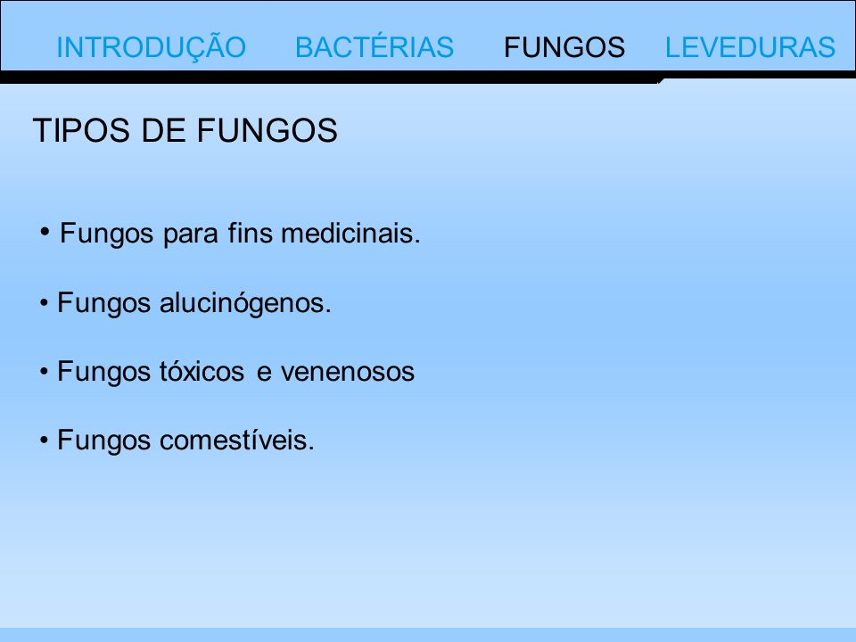 Fungos para fins medicinais.