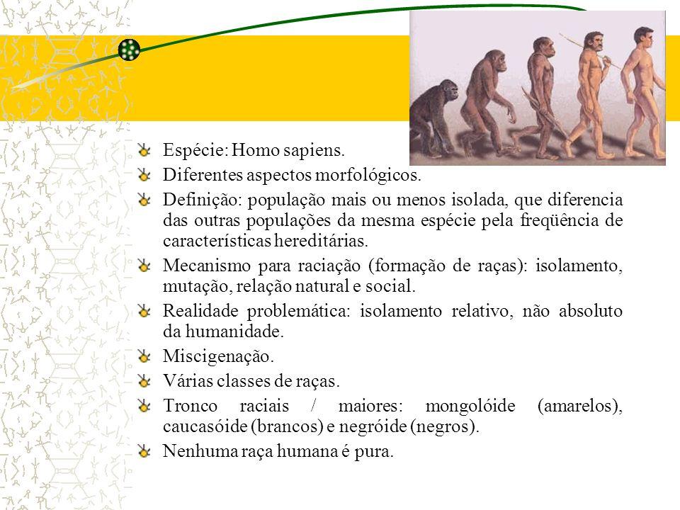 Espécie: Homo sapiens. Diferentes aspectos morfológicos.
