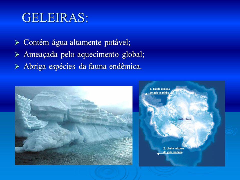 GELEIRAS: Contém água altamente potável;