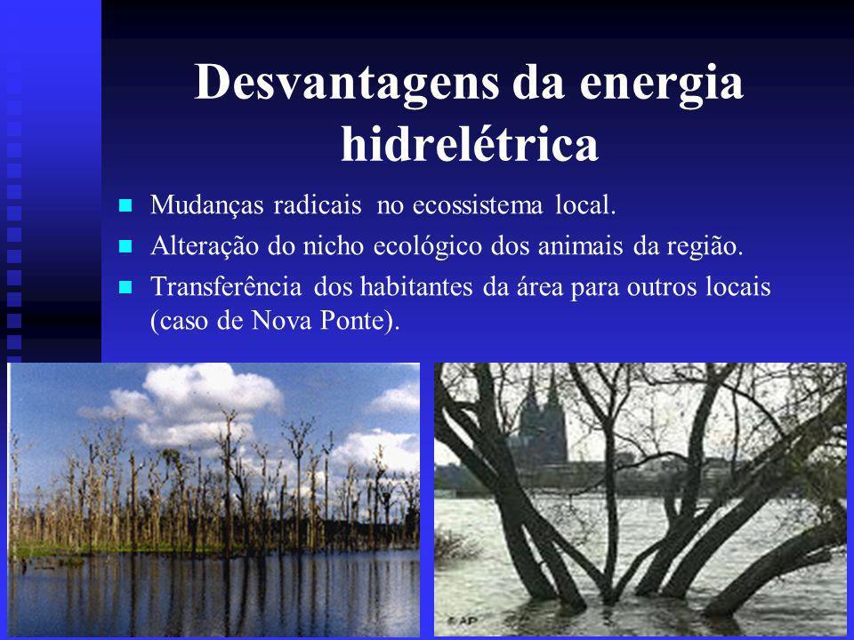 Desvantagens da energia hidrelétrica