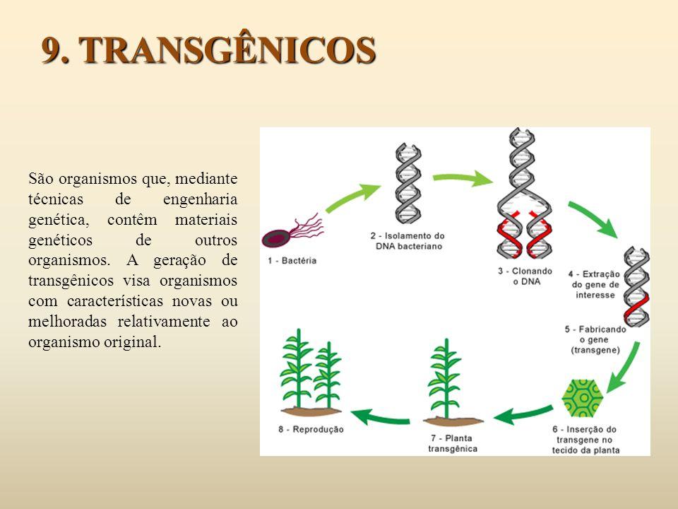 9. TRANSGÊNICOS
