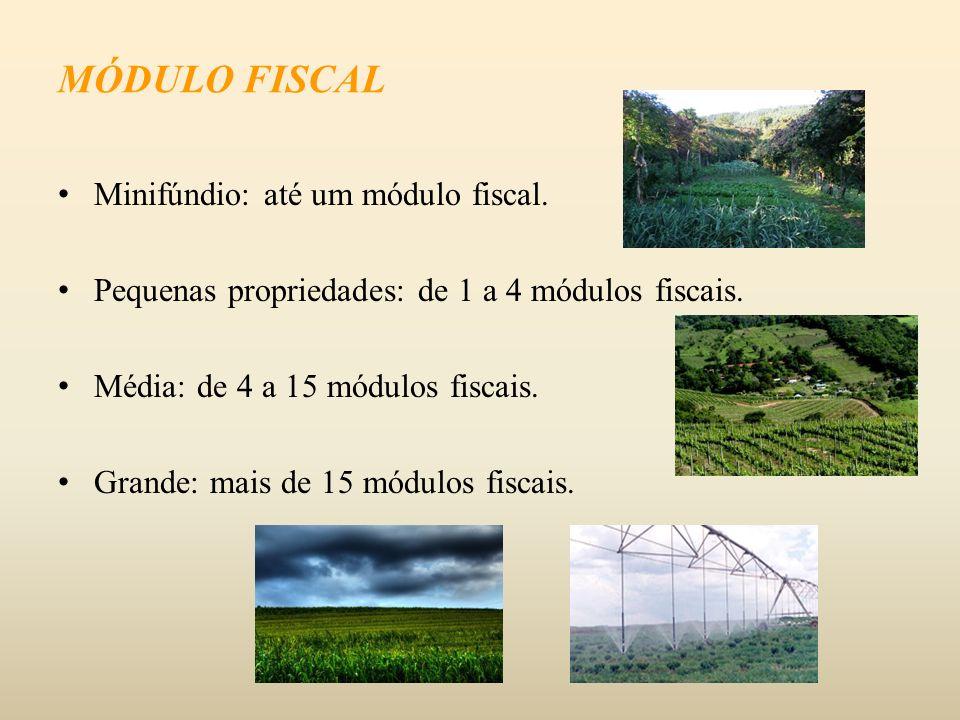 MÓDULO FISCAL Minifúndio: até um módulo fiscal.