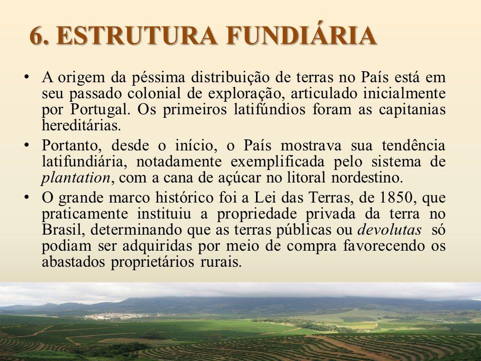 6. ESTRUTURA FUNDIÁRIA