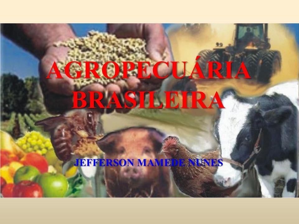 AGROPECUÁRIA BRASILEIRA