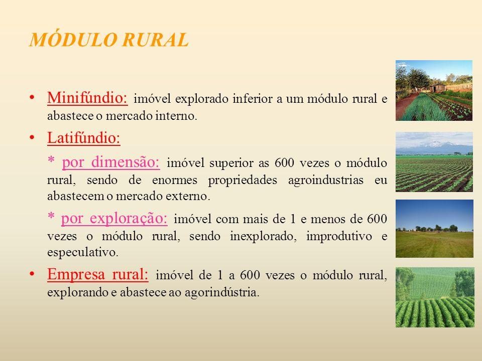 MÓDULO RURAL Minifúndio: imóvel explorado inferior a um módulo rural e abastece o mercado interno. Latifúndio:
