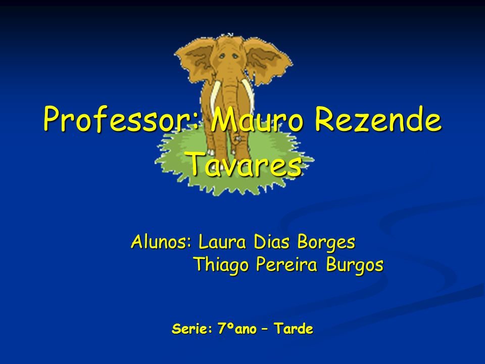 Professor: Mauro Rezende Tavares