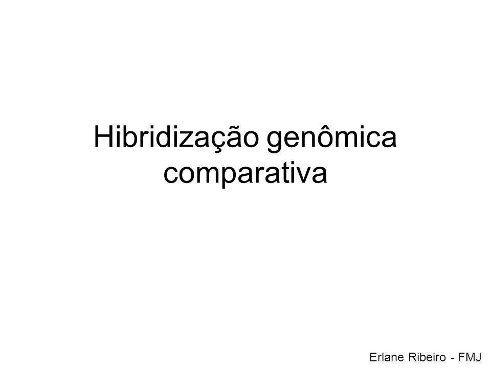 Hibridização genômica comparativa