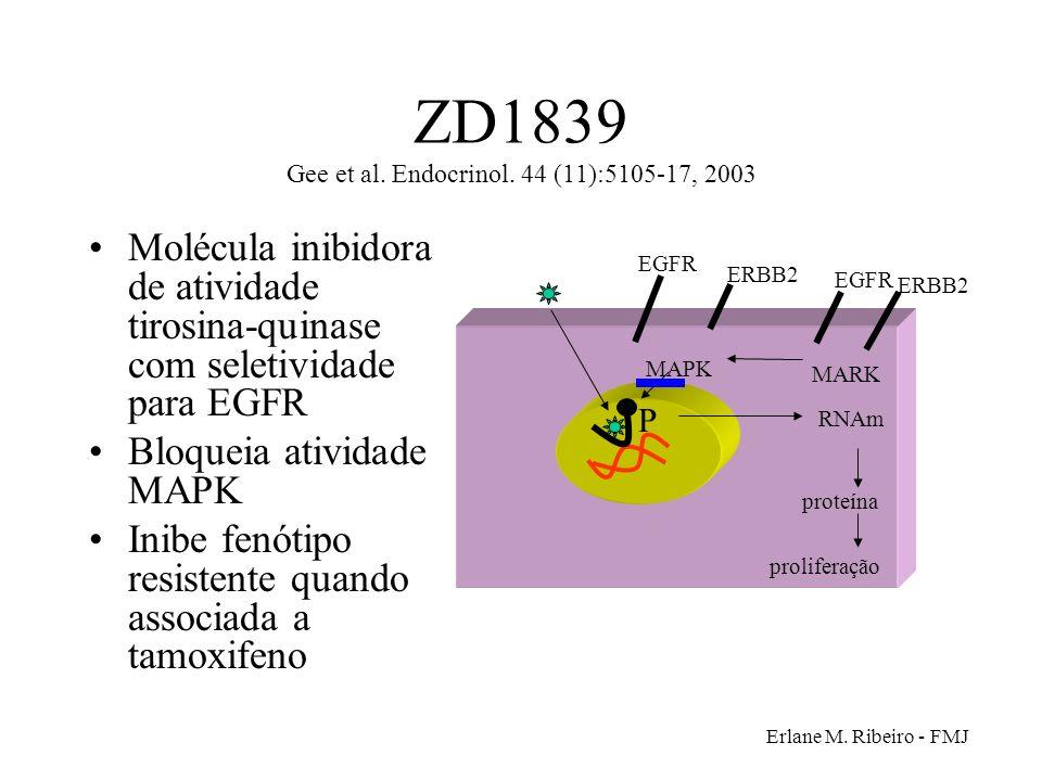 ZD1839 Gee et al. Endocrinol. 44 (11):5105-17, 2003
