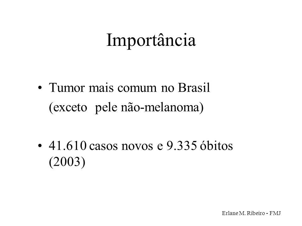 Importância Tumor mais comum no Brasil (exceto pele não-melanoma)