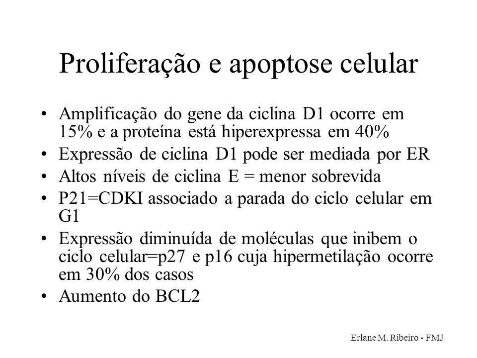 Proliferação e apoptose celular