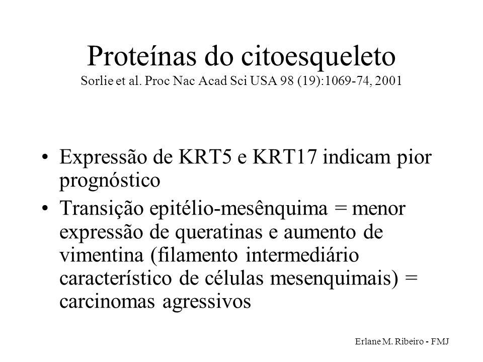 Proteínas do citoesqueleto Sorlie et al