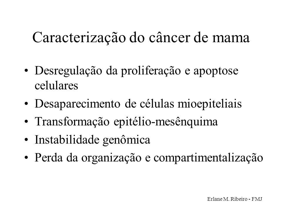 Caracterização do câncer de mama