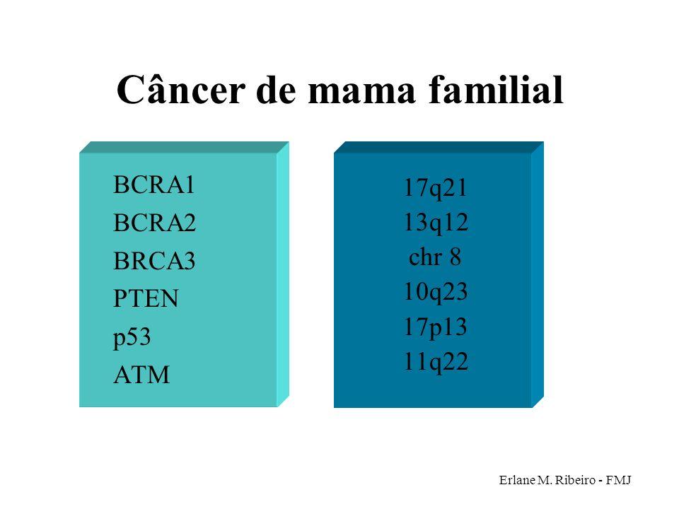 Câncer de mama familial