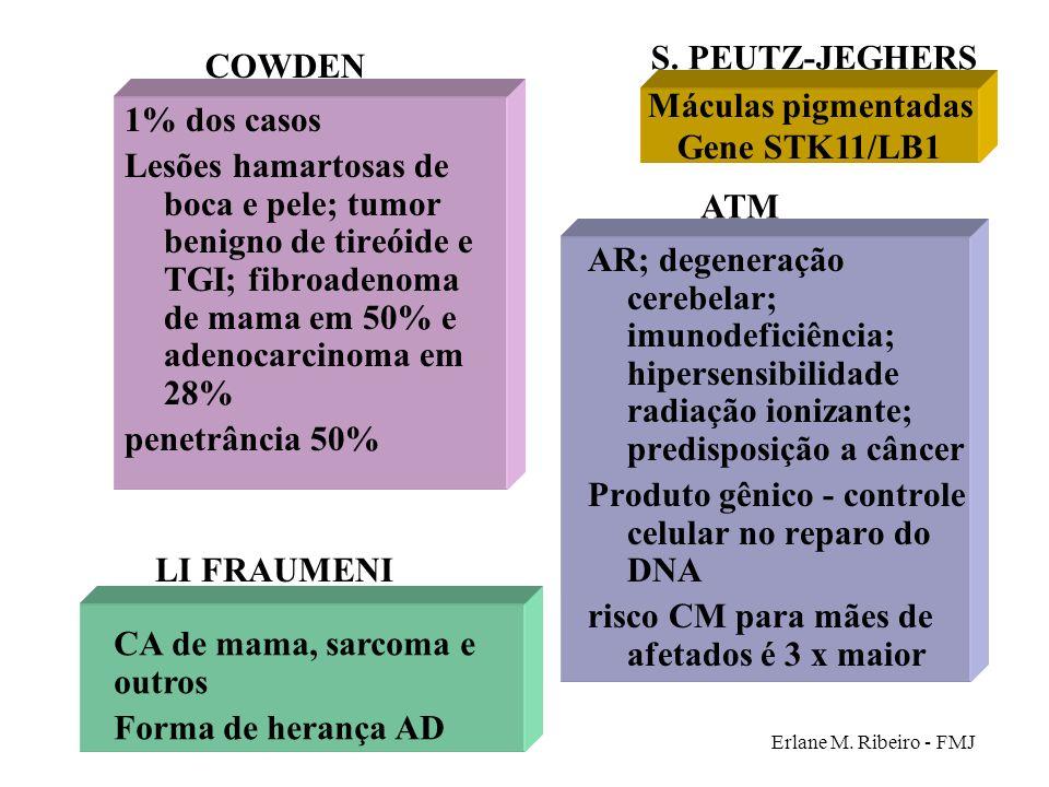 COWDEN Máculas pigmentadas Gene STK11/LB1