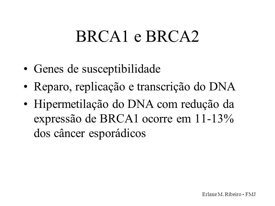 BRCA1 e BRCA2 Genes de susceptibilidade
