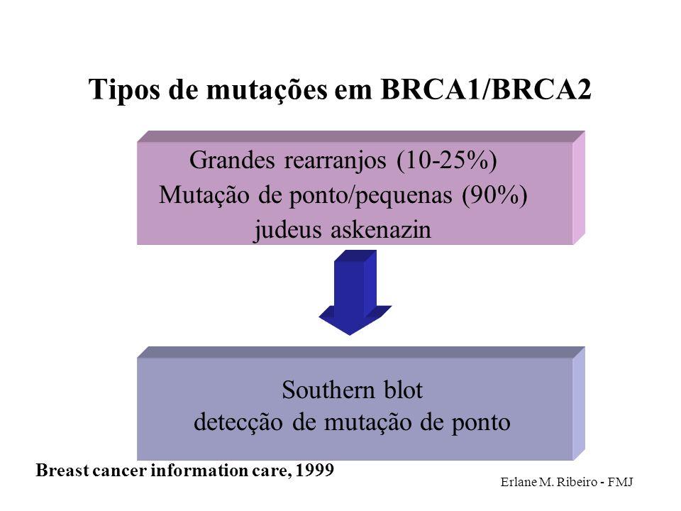 Tipos de mutações em BRCA1/BRCA2