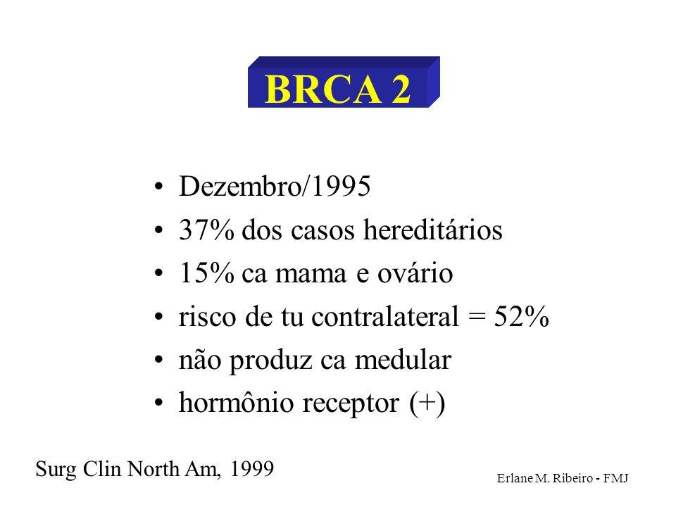 BRCA 2 Dezembro/1995 37% dos casos hereditários 15% ca mama e ovário