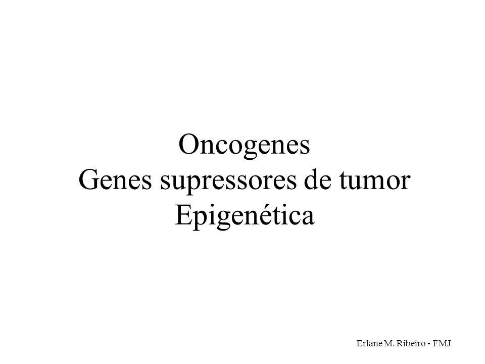 Oncogenes Genes supressores de tumor Epigenética