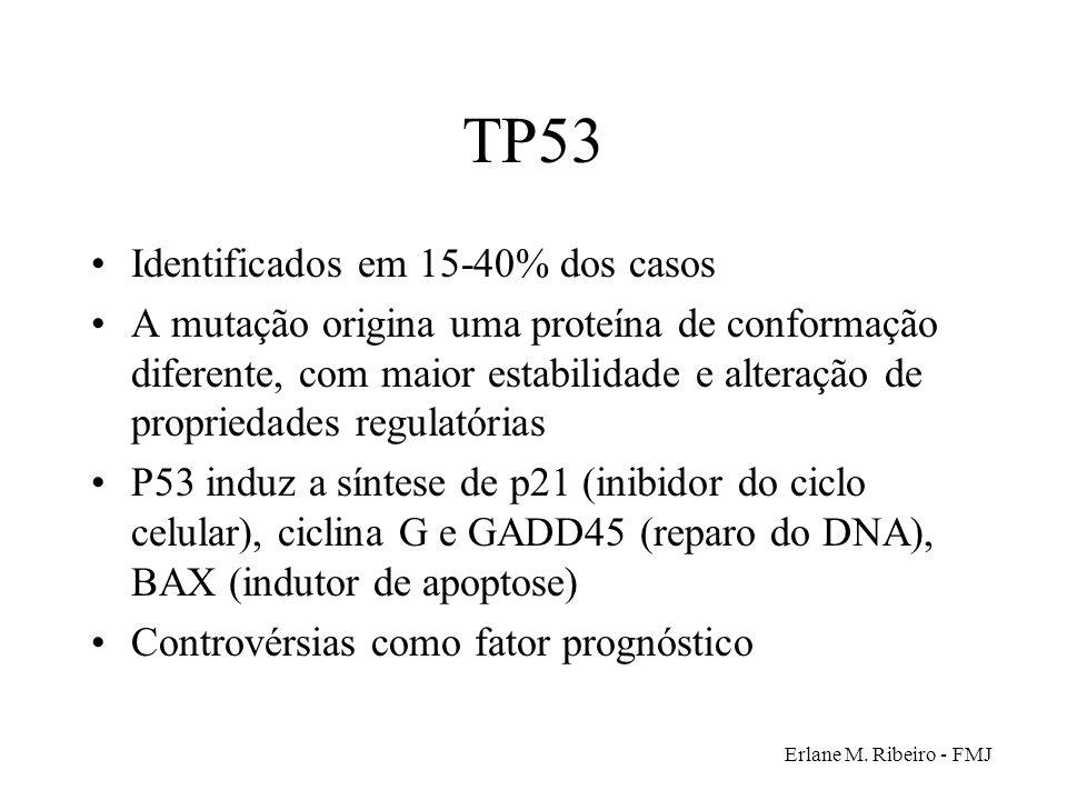 TP53 Identificados em 15-40% dos casos