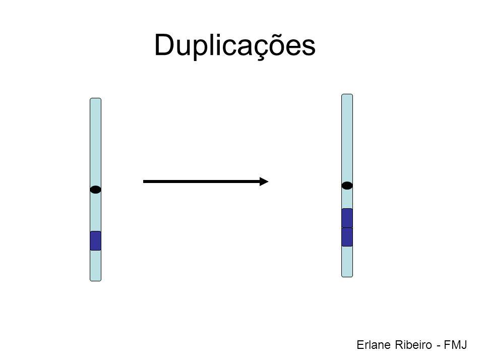 Duplicações Erlane Ribeiro - FMJ
