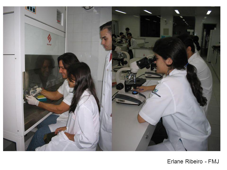 Erlane Ribeiro - FMJ