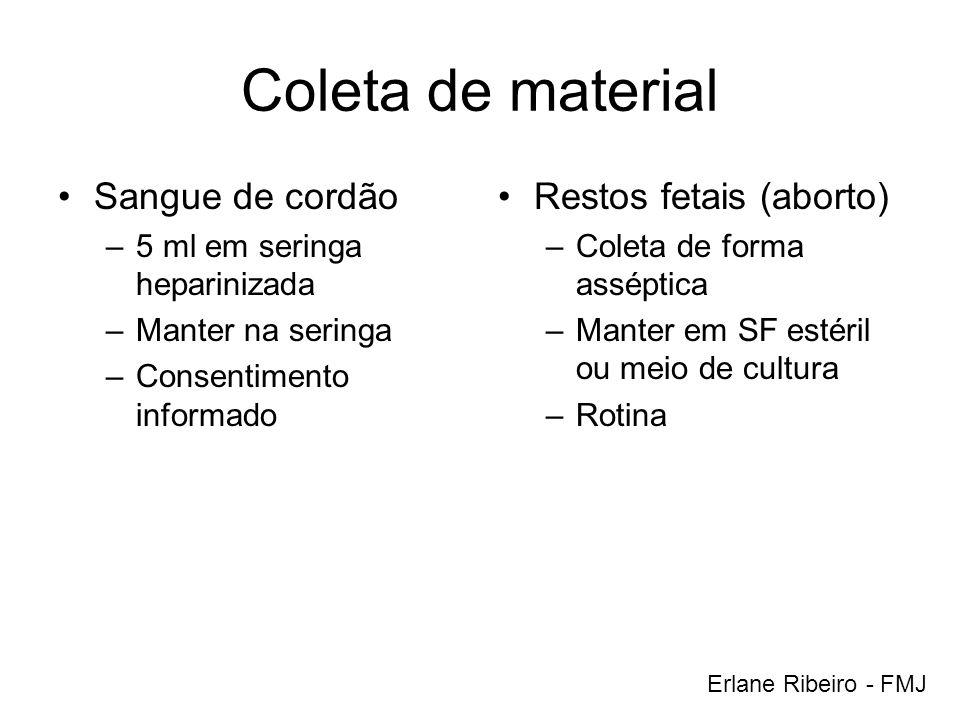 Coleta de material Sangue de cordão Restos fetais (aborto)