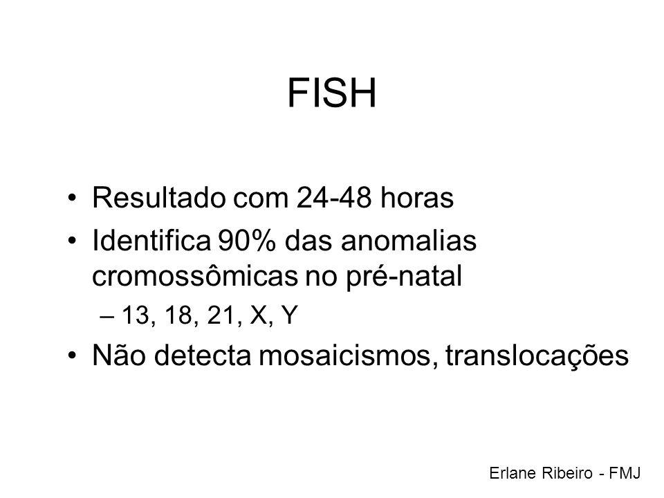 FISH Resultado com 24-48 horas