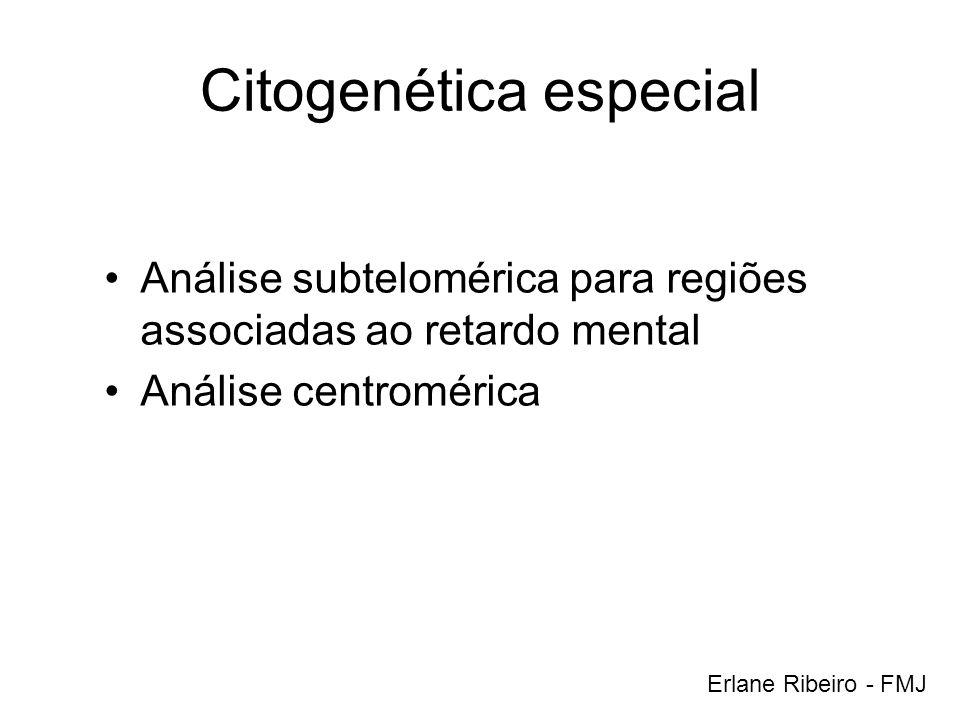 Citogenética especial
