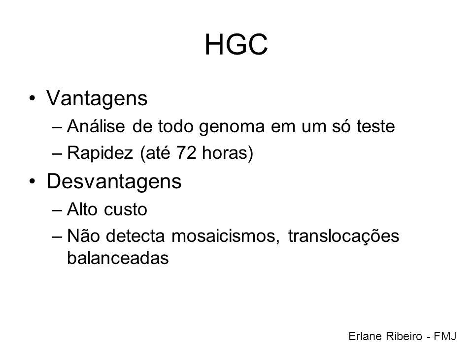 HGC Vantagens Desvantagens Análise de todo genoma em um só teste