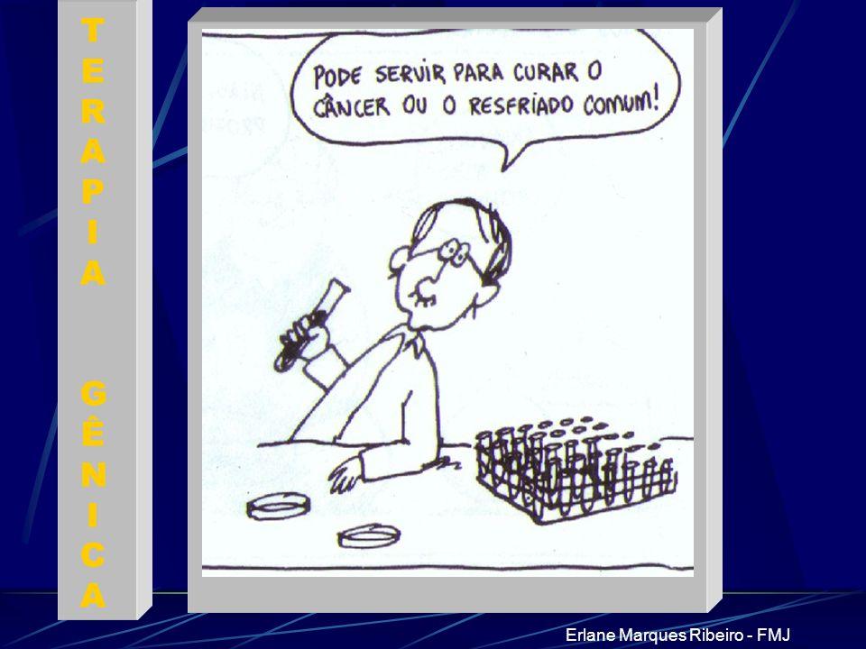 Erlane Marques Ribeiro - FMJ