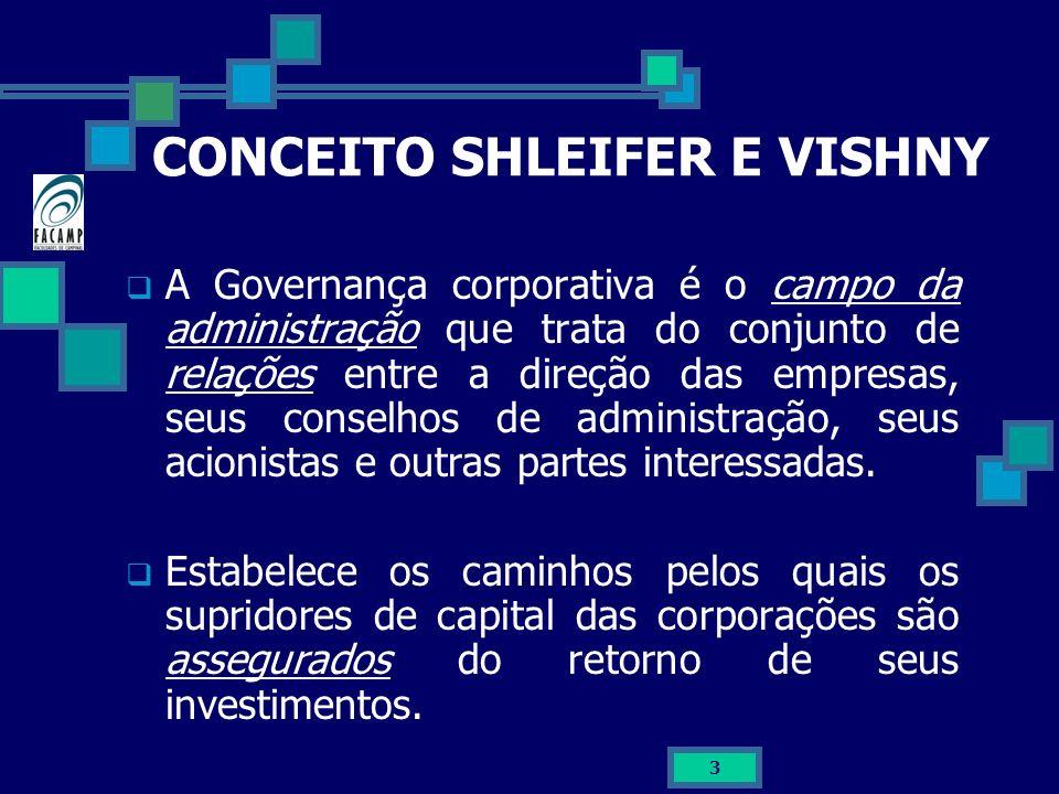 CONCEITO SHLEIFER E VISHNY