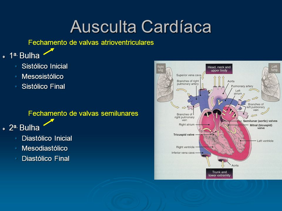 Ausculta Cardíaca 1a. Bulha 2a. Bulha