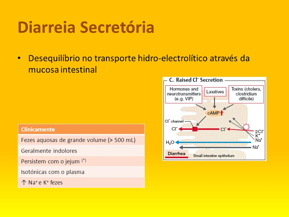 Diarreia SecretóriaDesequilíbrio no transporte hidro-electrolítico através da mucosa intestinal. Clinicamente.