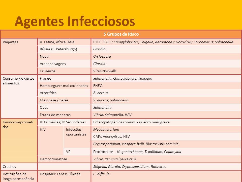 Agentes Infecciosos 5 grupos de risco 5 Grupos de Risco Viajantes