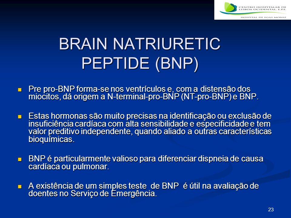 BRAIN NATRIURETIC PEPTIDE (BNP)