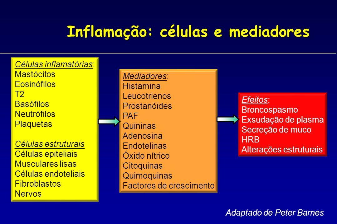 Inflamação: células e mediadores