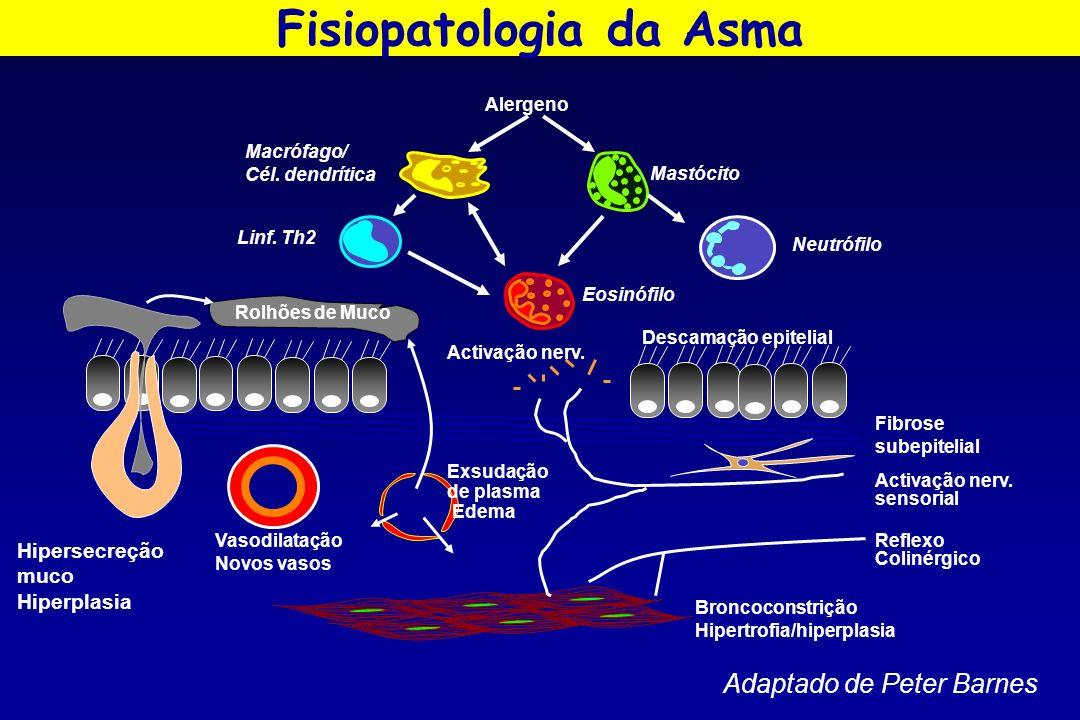 Fisiopatologia da Asma