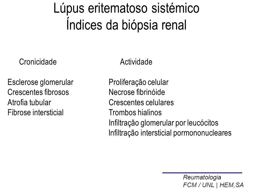 Lúpus eritematoso sistémico Índices da biópsia renal