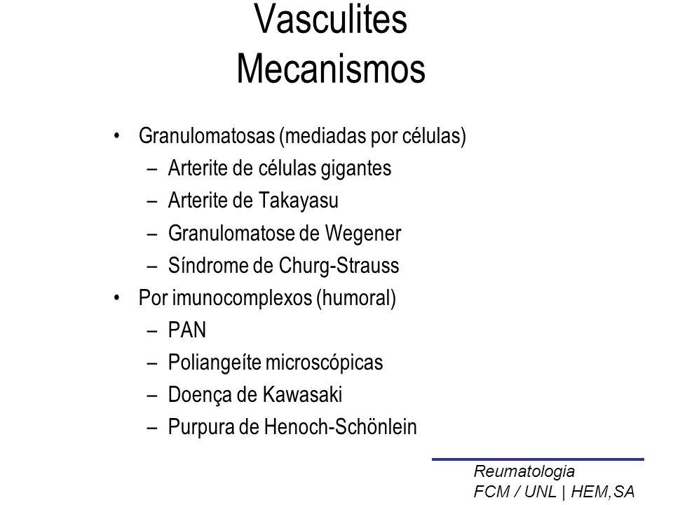Vasculites Mecanismos