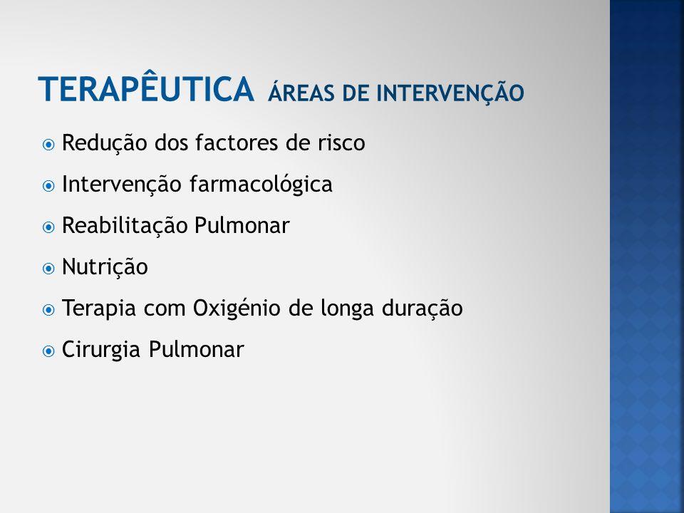 TERAPÊUTICA ÁREAS DE INTERVENÇÃO