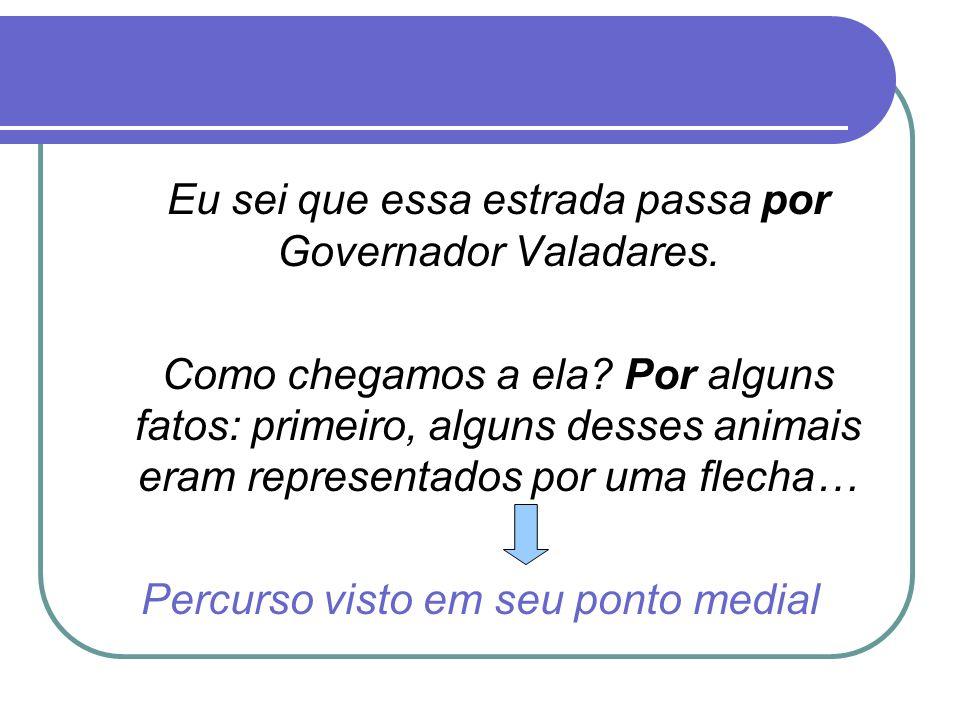 Eu sei que essa estrada passa por Governador Valadares.
