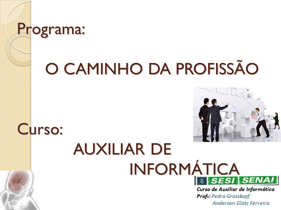 Programa: O CAMINHO DA PROFISSÃO Curso: AUXILIAR DE INFORMÁTICA