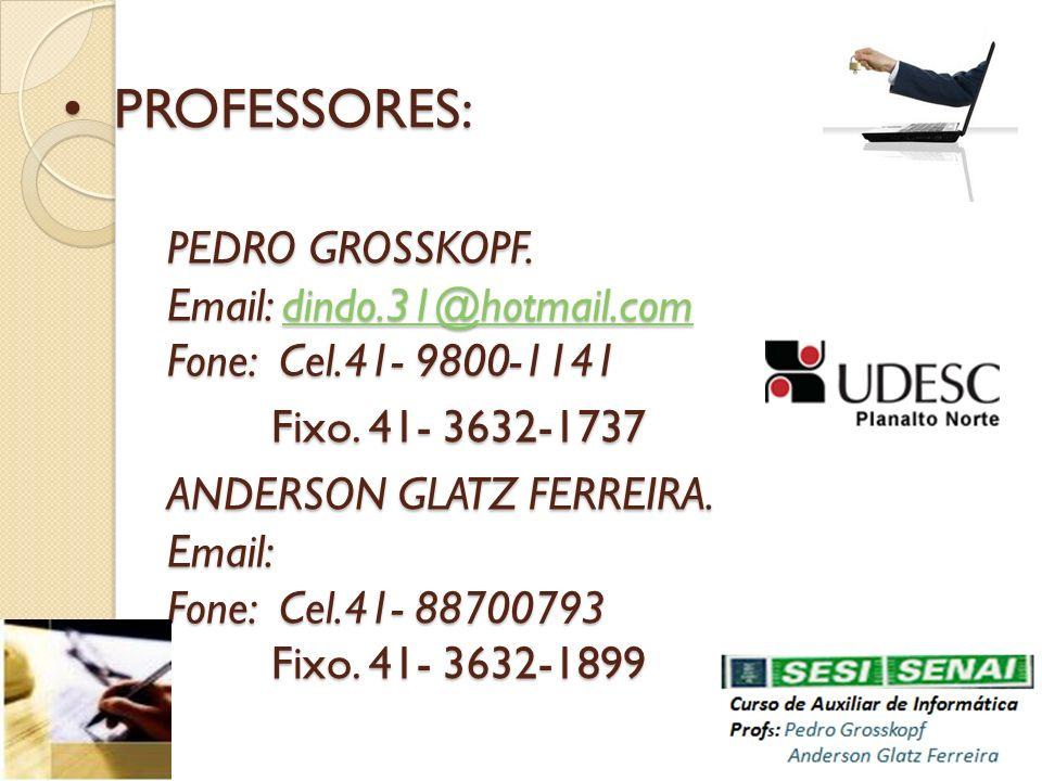PROFESSORES: PEDRO GROSSKOPF. Email: dindo.31@hotmail.com Fone: Cel.41- 9800-1141 Fixo.
