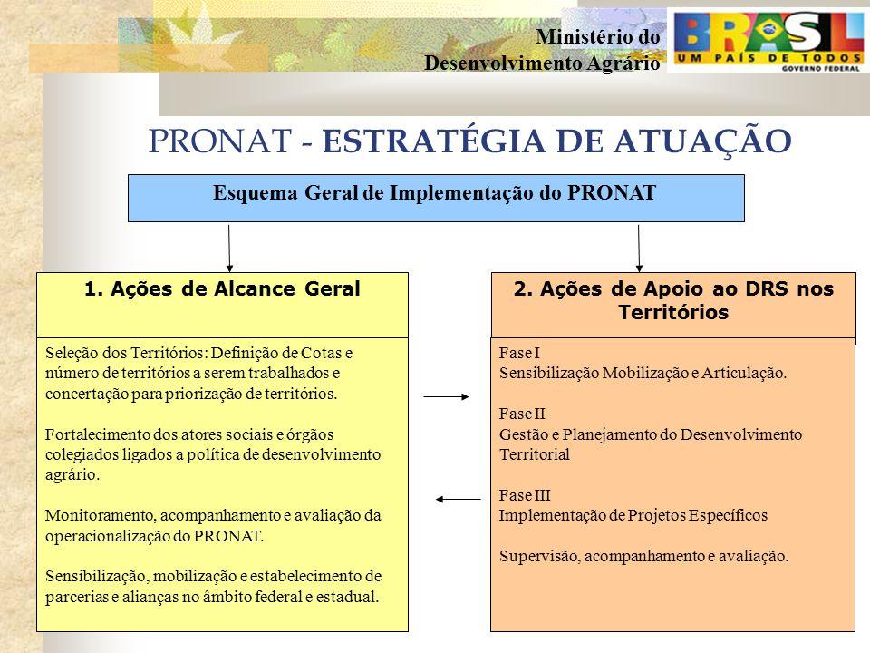PRONAT - ESTRATÉGIA DE ATUAÇÃO