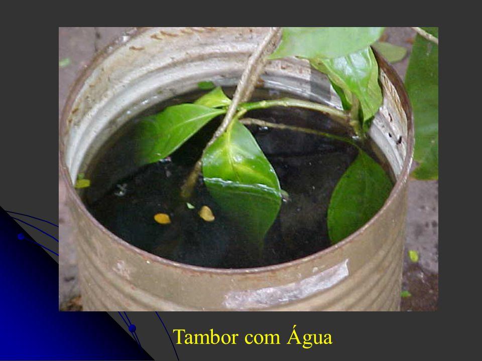 Tambor com Água