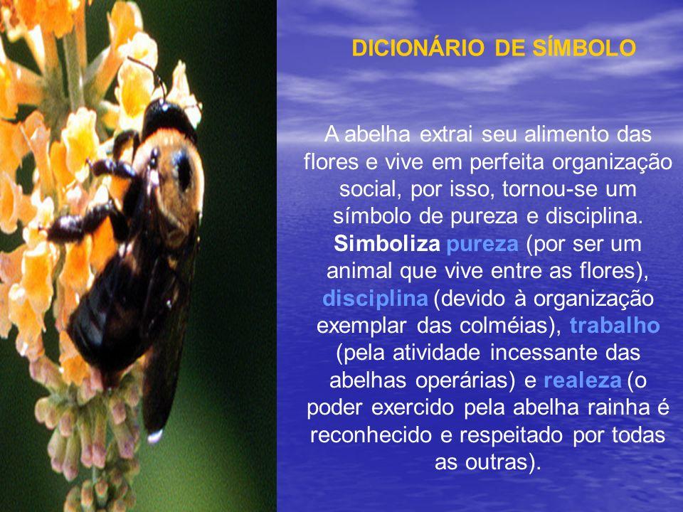 DICIONÁRIO DE SÍMBOLO