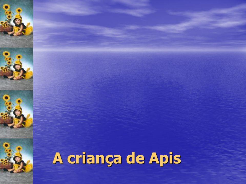 A criança de Apis 34