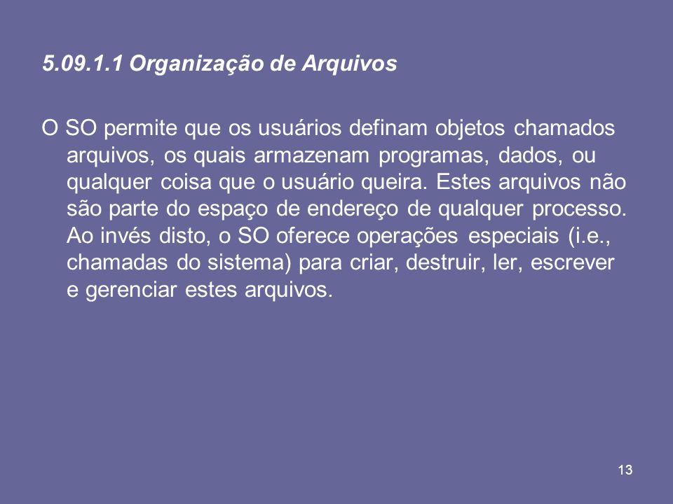 5.09.1.1 Organização de Arquivos