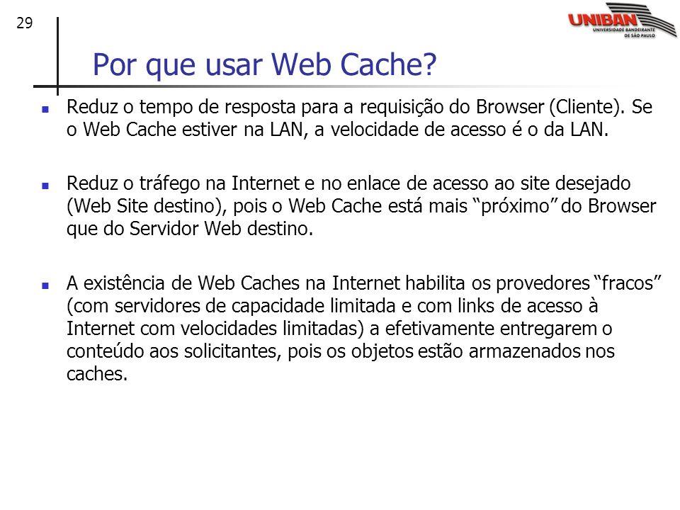 Por que usar Web Cache