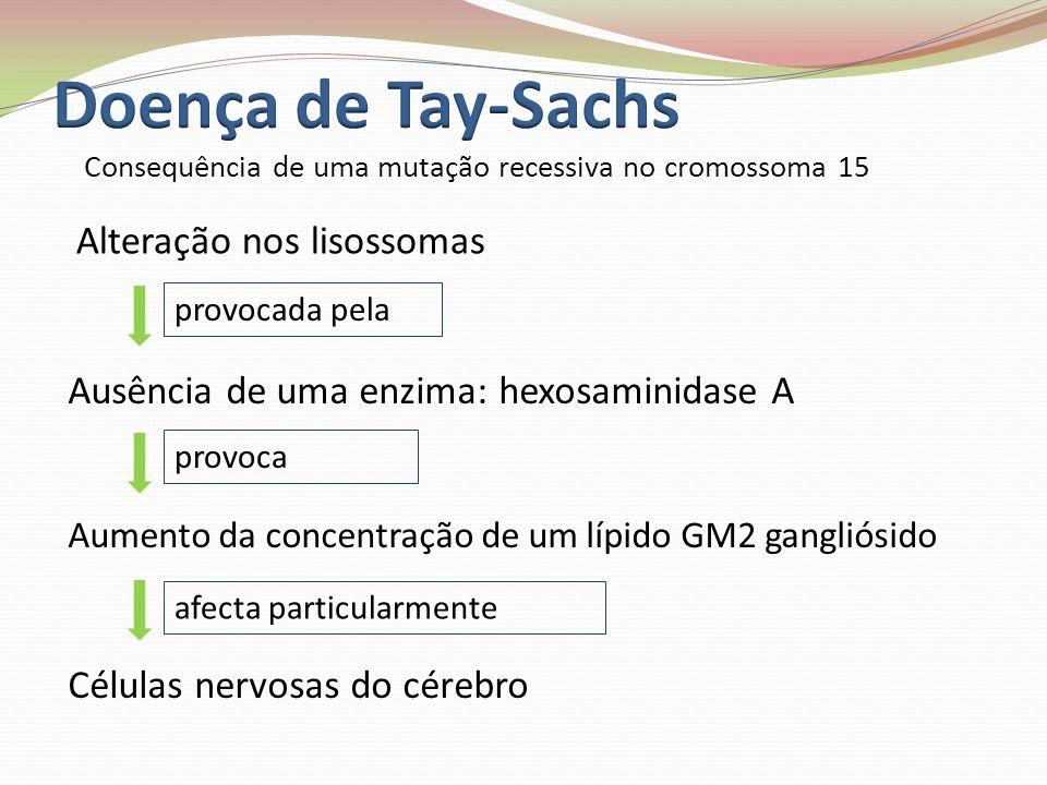 Doença de Tay-Sachs Alteração nos lisossomas